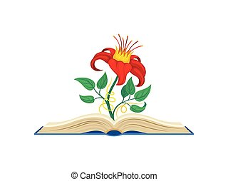 ベクトル, bindweed, 花, のまわり, 形態, 中央, stem., 包む, 黄色, バックグラウンド。, すばらしい, イラスト, 白い赤, crown.