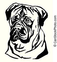 ベクトル, bullmastiff, 装飾用である, 肖像画, 犬, イラスト