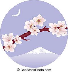 ベクトル, (cherry), sakura, ブランチ