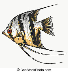 ベクトル, fish, イラスト, scalar, 背景, 黒, 白