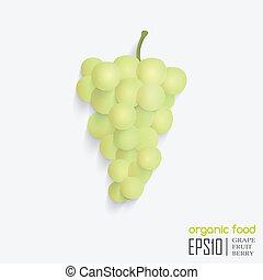 ベクトル, grape., 隔離された, イラスト