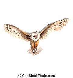 ベクトル, isolated., 空, スタイル, 野生生物, フクロウ, 鳥