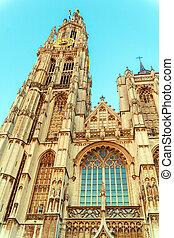 ベルギー, 大聖堂, アントワープ, gothic, 夜