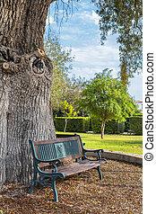 ベンチ, 下に, 木, 中に, 町, 公園