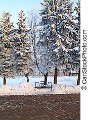ベンチ, 中に, 冬, 公園
