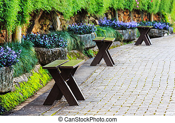 ベンチ, 中に, 美しい, 公園, ∥で∥, 小道