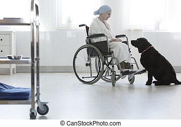 ペット, 患者, 病院, 療法