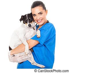 ペット, 獣医, 犬, 抱き合う, 医者