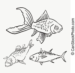 ペット, fish, スケッチ, 動物