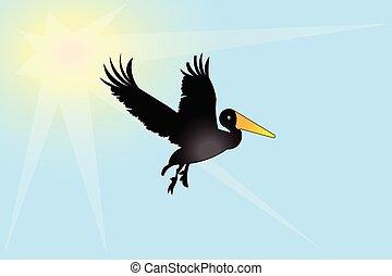 ペリカン, 鳥