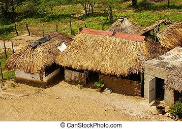 ペルー人, ペルー, amazonas, 景色。