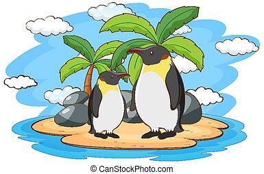 ペンギン, 地位, 島