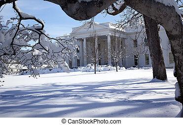 ペンシルバニア, 家, 後で, ワシントン, 雪, 木, dc, ave, 白