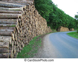 ペーパー, 搾取, 産業, 木