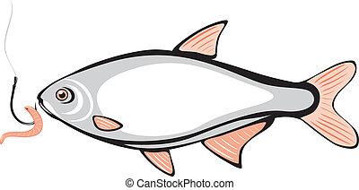 ホック, fish, みみず, 釣り