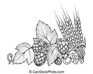 ホツプ, ベクトル, 装飾, 大麦, イラスト