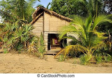 ホテル, 浜, cabana