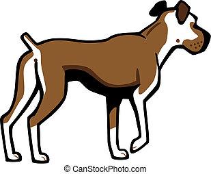 ボクサー犬