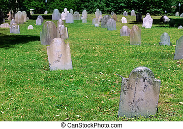ボストン, 埋めること, 中央である, 共通, 地面