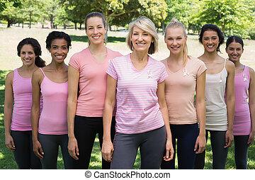 ボランティア, 支持, 乳癌 意識, パークに
