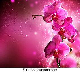 ボーダー, 花, デザイン, 蘭