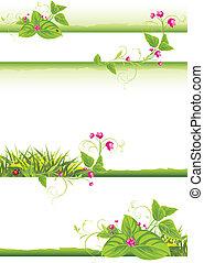 ボーダー, 花, 小枝