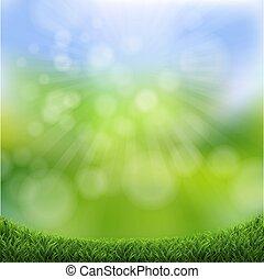 ボーダー, bokeh, 草, 緑, 自然