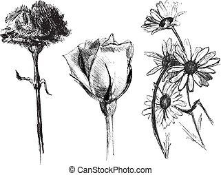 ボールペン, スケッチ, セット, 花, ペン, 咲く