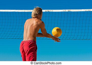 ボール, -, バレーボール, 給仕, 浜, 人