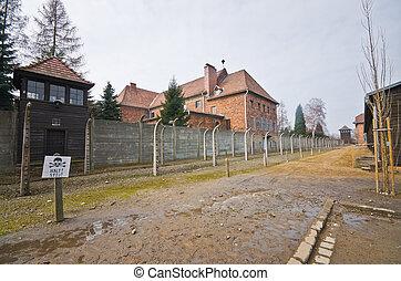 ポーランド, auschwitz