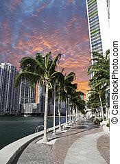 マイアミ 浜, ∥において∥, 日没, フロリダ
