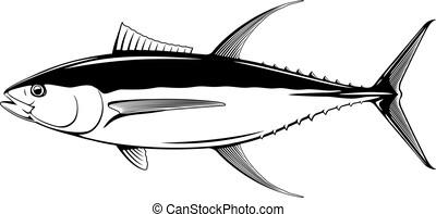 マグロ, yellowfin, fish