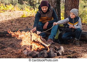 マシュマロ, 料理, 父, 森林, 息子