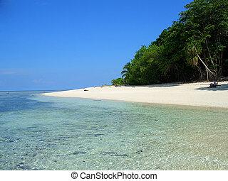 マレーシア, sipadan, sabah, 浜, 島