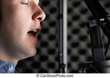 マレ, ボーカリスト, ∥で∥, マイクロフォン, 中に, レコーディングスタジオ