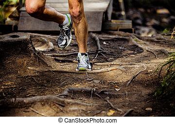 マレ, ランナー, 動くこと, 森林, 足, マラソン