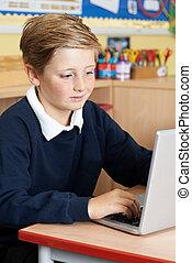 マレ, 小学校, 生徒, ラップトップを使用して, 中に, コンピュータクラス