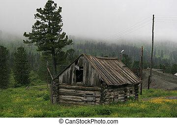 ミステリー, 古い, 家, 霧, 丘, pinery