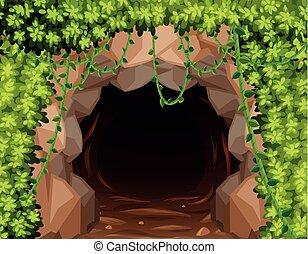 ミステリー, 洞穴, 私の, 自然