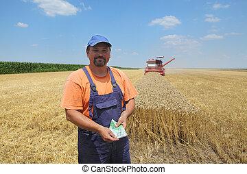 ムギの収穫, 農業