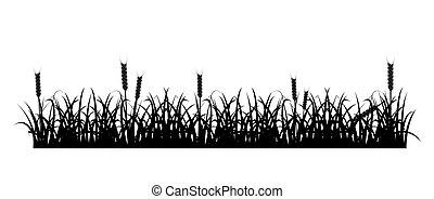 ムギの 草, シルエット
