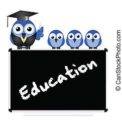メッセージ, 教育