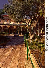 モスク, al-jazzar, 古い, エーカー