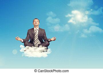 モデル, ロータス, の上, 見る, ビジネスマン, ポジション, 雲