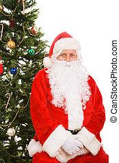モデル, 木, クリスマス, santa, 下に