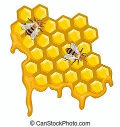 モデル, 蜂, 隔離された, 2, バックグラウンド。, ベクトル, honeycombs., グラフィックス, 白
