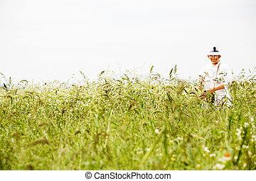 モデル, 韓国, 農夫, 南, 人形