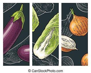 モノクローム, ベクトル, 色, セット, vegetables., 彫版, 型