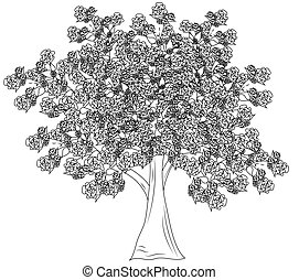 モノクローム, 木, 1(人・つ)