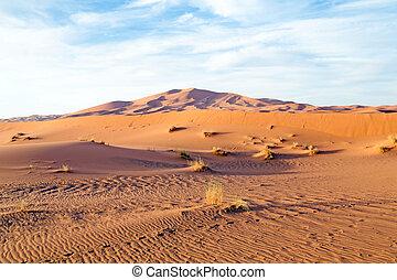 モロッコ, サハラ砂漠